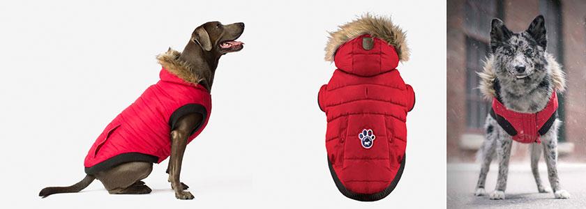 Canada Pooch North Pole